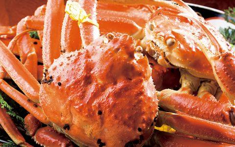 Echizen Gani Crab