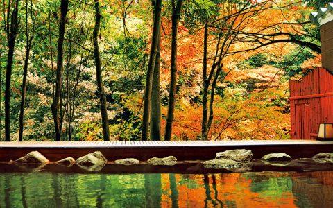 Kaga Onsen (Hot Spring) Area