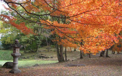 Former Hikone Domain Matsubara Suburban Residence Gardens (Ohama Goten)