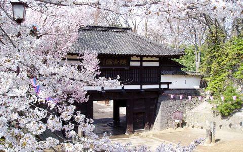 Komoro Kaikoen Park