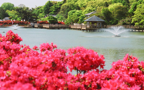 Nagaoka-Tenmangu Shrine